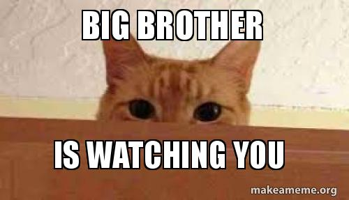 big-brother-is-5ab082.jpg