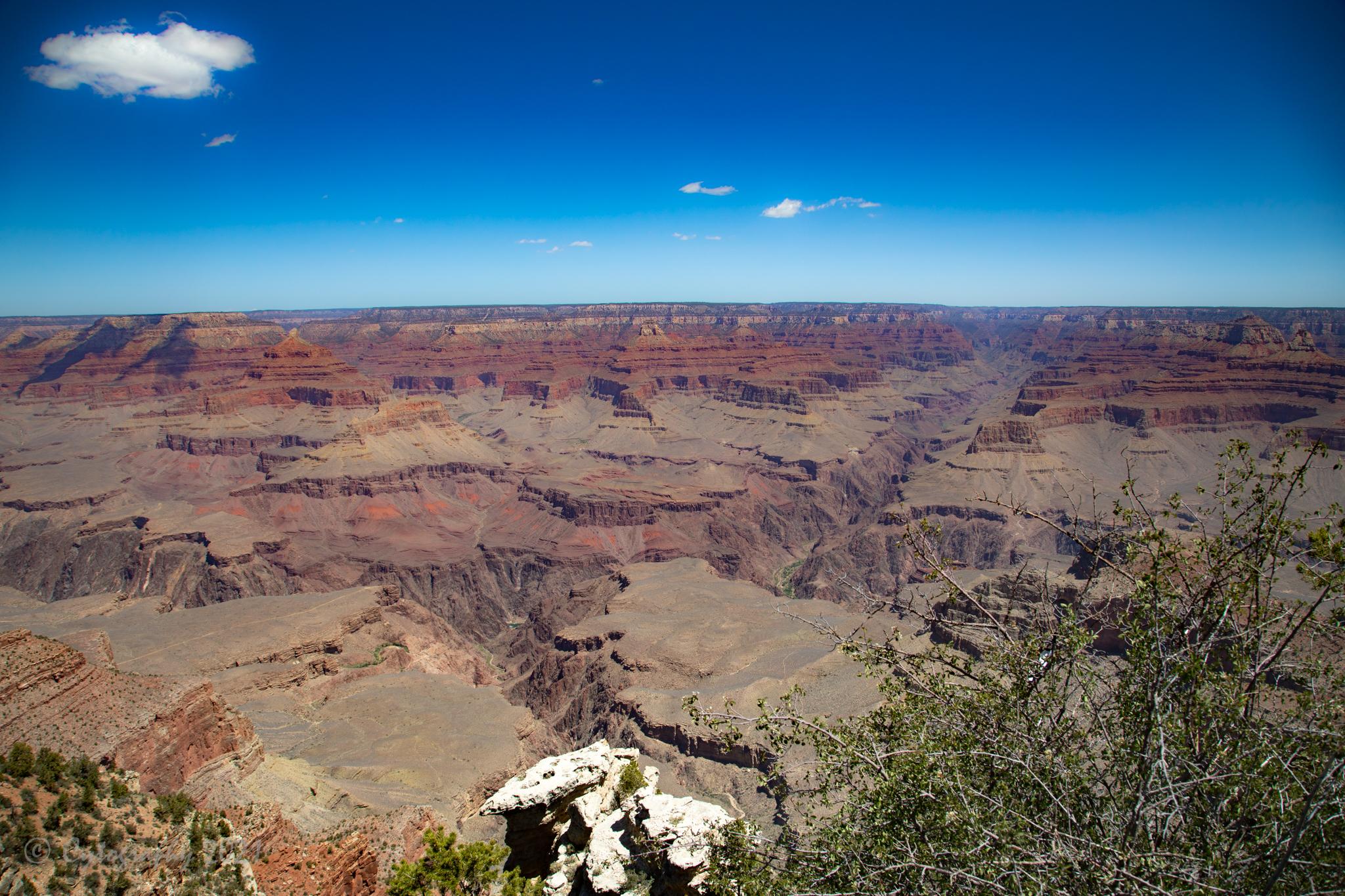 Grand Canyon-1700.jpg
