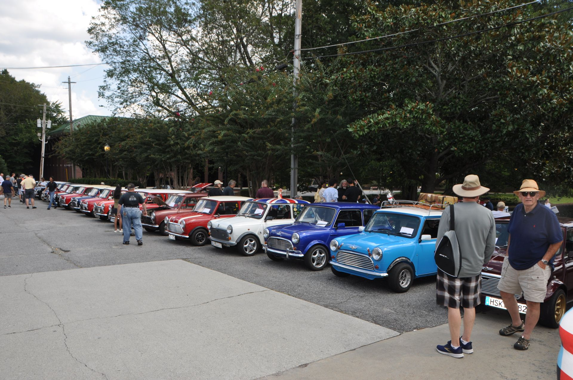 Minis as far as you could see.jpg